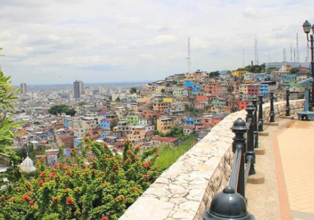Guayaquil Sightseeing & Churute