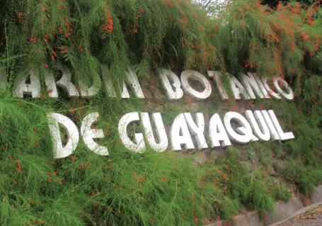Guayaquil & the Historic Park